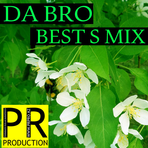 #11 DA BRO [prpro.kz] - Best S Mix
